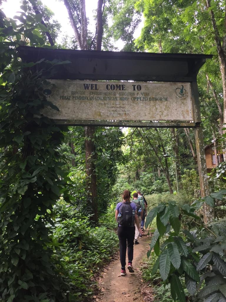 L'entrée dans le parc national